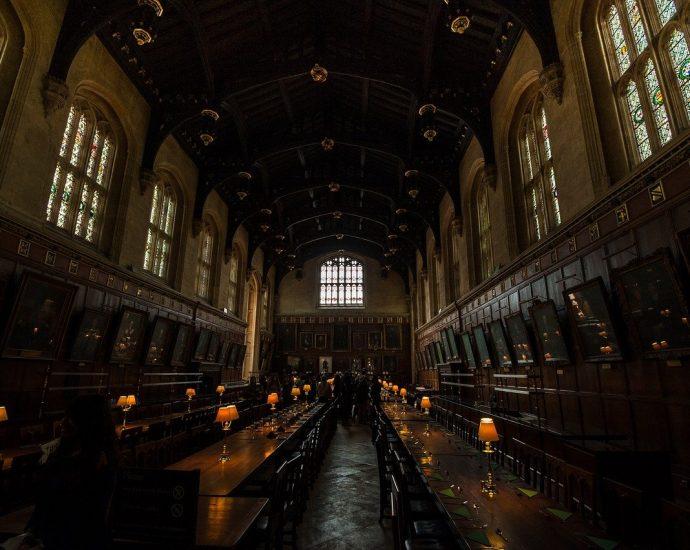 Dlaczego warto kupić różdżkę z filmu Harry Potter?